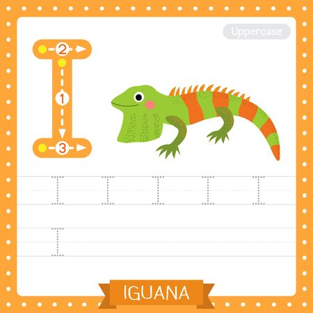 Letter I uppercase cute children colorful zoo and animals ABC alphabet tracing practice worksheet of Iguana for kids learning English vocabulary and handwriting vector illustration.