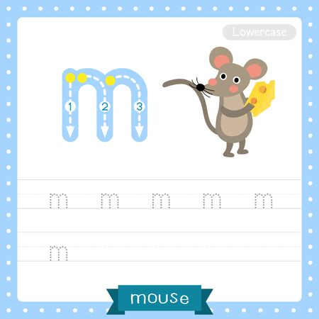 Letter M lowercase cute children colorful zoo and animals ABC alphabet tracing practice worksheet of Mouse holding cheese for kids learning English vocabulary and handwriting vector illustration.