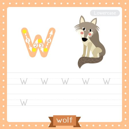 Letter W lowercase cute children colorful zoo and animals ABC alphabet tracing practice worksheet of Wolf for kids learning English vocabulary and handwriting vector illustration. Illusztráció