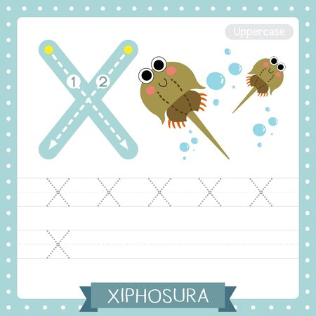 Letter X uppercase cute children colorful zoo and animals ABC alphabet tracing practice worksheet of Xiphosura for kids learning English vocabulary and handwriting vector illustration. Illusztráció