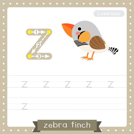 Letter Z lowercase cute children colorful zoo and animals ABC alphabet tracing practice worksheet of Zebra Finch bird for kids learning English vocabulary and handwriting vector illustration.