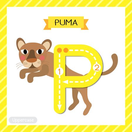Letter P uppercase cute children colorful zoo and animals ABC alphabet tracing flashcard of Jumping Puma for kids learning English vocabulary and handwriting vector illustration. Ilustração