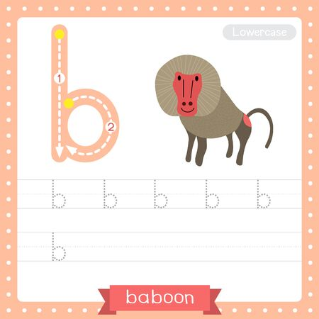 Letter B lowercase cute children colorful zoo and animals ABC alphabet tracing practice worksheet of Baboon for kids learning English vocabulary and handwriting vector illustration. Illusztráció
