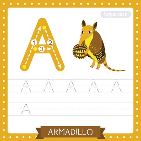 Letter A uppercase cute children colorful zoo and animals ABC alphabet tracing practice worksheet of Armadillo for kids learning English vocabulary and handwriting vector illustration.