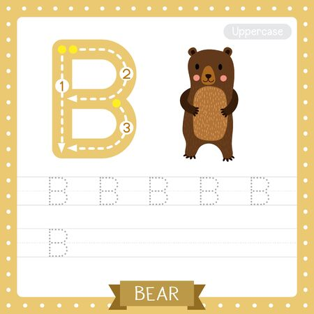 Letter B uppercase cute children colorful zoo and animals ABC alphabet tracing practice worksheet of Standing Bear for kids learning English vocabulary and handwriting vector illustration. Vector Illustration