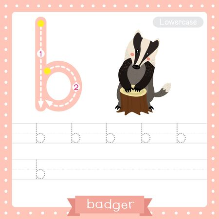 Letter B lowercase cute children colorful zoo and animals ABC alphabet tracing practice worksheet of Badger for kids learning English vocabulary and handwriting vector illustration.