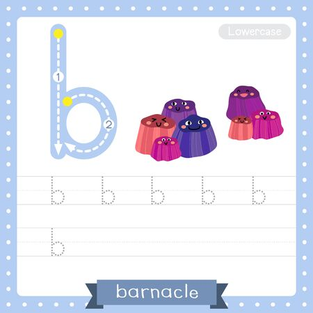 Letter B lowercase cute children colorful zoo and animals ABC alphabet tracing practice worksheet of Barnacle for kids learning English vocabulary and handwriting vector illustration.