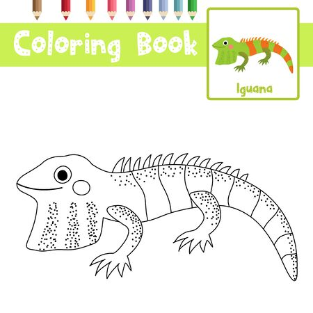 Coloring page of Iguana animals cartoon character for preschool kids activity educational worksheet. Vector Illustration.