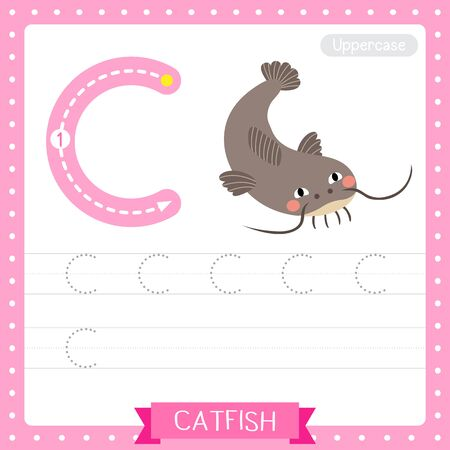 Letter C uppercase cute children colorful zoo and animals ABC alphabet tracing practice worksheet of Funny Catfish for kids learning English vocabulary and handwriting vector illustration.