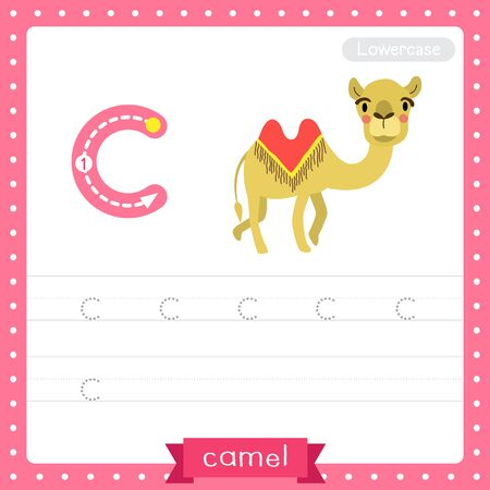 Letter C lowercase cute children colorful zoo and animals ABC alphabet tracing practice worksheet of Bactrian Camel for kids learning English vocabulary and handwriting vector illustration. Çizim
