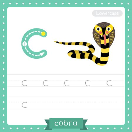 Letter C lowercase cute children colorful zoo and animals ABC alphabet tracing practice worksheet of Black and Yellow Cobra snake for kids learning English vocabulary and handwriting vector illustration.
