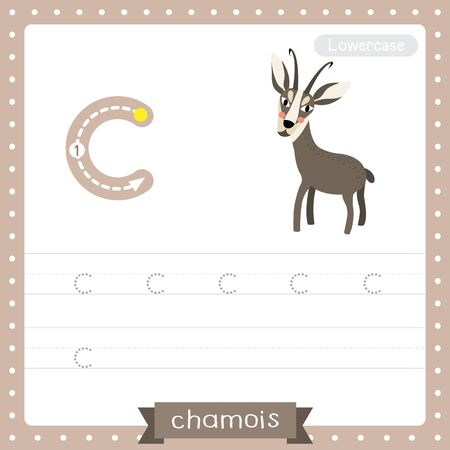 Letter C lowercase cute children colorful zoo and animals ABC alphabet tracing practice worksheet of Standing Chamois for kids learning English vocabulary and handwriting vector illustration.
