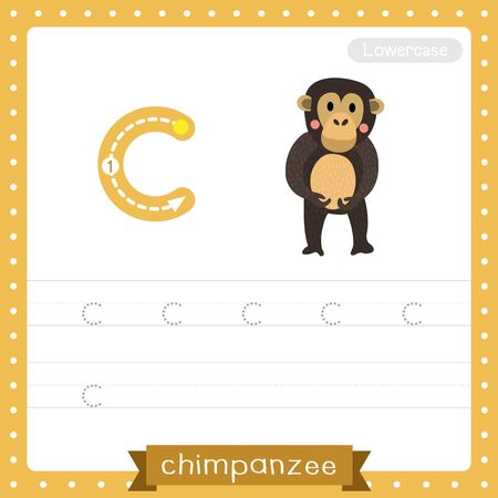 Letter C lowercase cute children colorful zoo and animals ABC alphabet tracing practice worksheet of Standing Chimpanzee for kids learning English vocabulary and handwriting vector illustration.