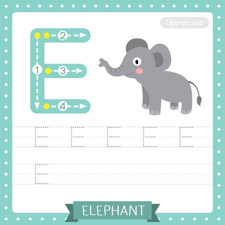 Letter E uppercase cute children colorful zoo and animals ABC alphabet tracing practice worksheet of Standing Elephant for kids learning English vocabulary and handwriting vector illustration.