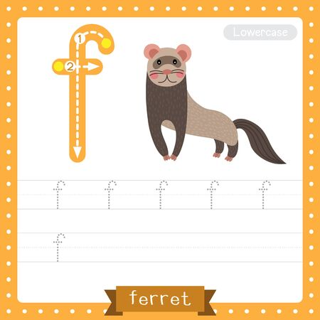 Letter F lowercase cute children colorful zoo and animals ABC alphabet tracing practice worksheet of Standing Ferret for kids learning English vocabulary and handwriting vector illustration. Illusztráció