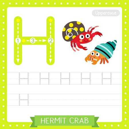 Letter H uppercase cute children colorful zoo and animals ABC alphabet tracing practice worksheet of Colorful Hermit Crab for kids learning English vocabulary and handwriting vector illustration.