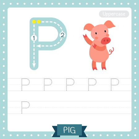 Letter P uppercase cute children colorful zoo and animals ABC alphabet tracing practice worksheet of Dancing Pig for kids learning English vocabulary and handwriting vector illustration. Ilustração