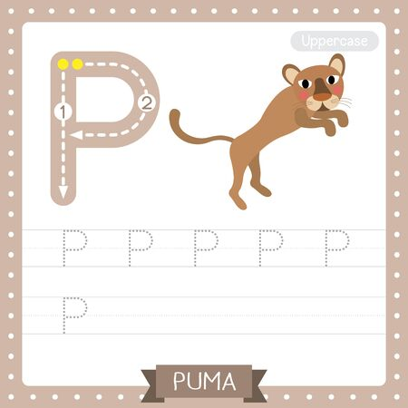 Letter P uppercase cute children colorful zoo and animals ABC alphabet tracing practice worksheet of Jumping Puma for kids learning English vocabulary and handwriting vector illustration. Ilustração