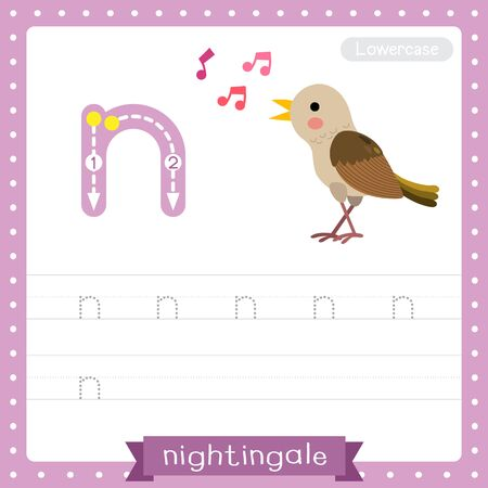 Letter N lowercase cute children colorful zoo and animals ABC alphabet tracing practice worksheet of Singing Nightingale bird for kids learning English vocabulary and handwriting vector illustration.