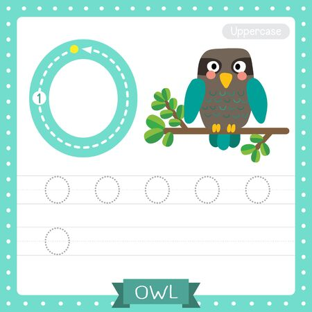 Letter O uppercase cute children colorful zoo and animals ABC alphabet tracing practice worksheet of Turquoise Owl bird for kids learning English vocabulary and handwriting vector illustration.