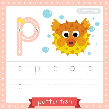 Letter P lowercase cute children colorful zoo and animals ABC alphabet tracing practice worksheet of Pufferfish for kids learning English vocabulary and handwriting vector illustration.