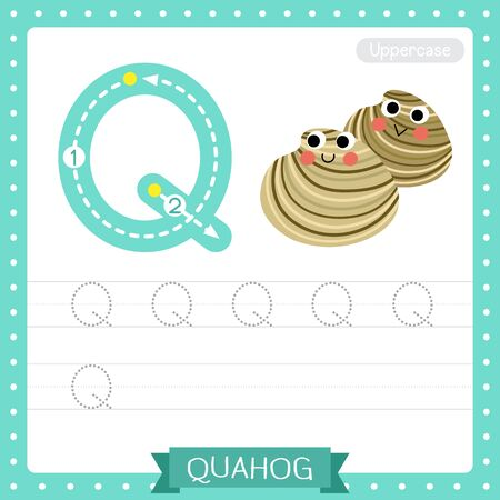 Letter Q uppercase cute children colorful zoo and animals ABC alphabet tracing practice worksheet of Quahog for kids learning English vocabulary and handwriting vector illustration.