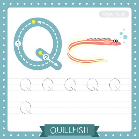 Letter Q uppercase cute children colorful zoo and animals ABC alphabet tracing practice worksheet of Quillfish for kids learning English vocabulary and handwriting vector illustration.