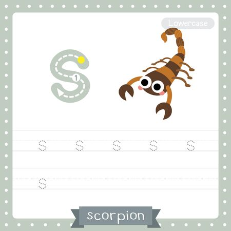 Letter S lowercase cute children colorful zoo and animals ABC alphabet tracing practice worksheet of Scorpion for kids learning English vocabulary and handwriting vector illustration.