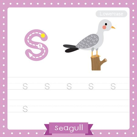 Letter S lowercase cute children colorful zoo and animals ABC alphabet tracing practice worksheet of Seagull bird perching branch for kids learning English vocabulary and handwriting vector illustration.