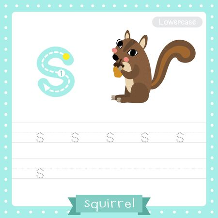 Letter S lowercase cute children colorful zoo and animals ABC alphabet tracing practice worksheet of Squirrel for kids learning English vocabulary and handwriting vector illustration. 向量圖像