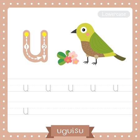 Letter U lowercase cute children colorful zoo and animals ABC alphabet tracing practice worksheet of Uguisu bird for kids learning English vocabulary and handwriting vector illustration.