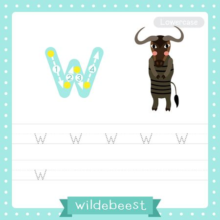 Letter W lowercase cute children colorful zoo and animals ABC alphabet tracing practice worksheet of Wildebeest for kids learning English vocabulary and handwriting vector illustration.