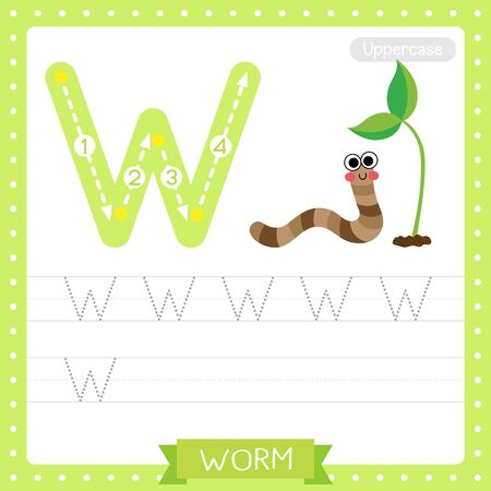 Letter W uppercase cute children colorful zoo and animals ABC alphabet tracing practice worksheet of Happy Worm for kids learning English vocabulary and handwriting vector illustration. Vector Illustration
