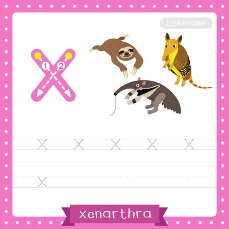 Letter X lowercase cute children colorful zoo and animals ABC alphabet tracing practice worksheet of Xenarthra for kids learning English vocabulary and handwriting vector illustration. Çizim