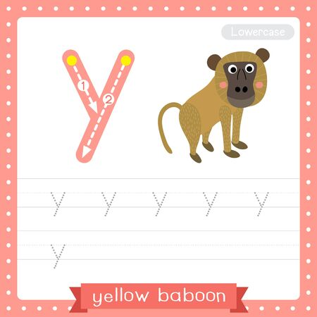 Letter Y lowercase cute children colorful zoo and animals ABC alphabet tracing practice worksheet of Yellow Baboon monkey for kids learning English vocabulary and handwriting vector illustration.