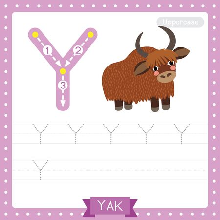Letter Y uppercase cute children colorful zoo and animals ABC alphabet tracing practice worksheet of Yak for kids learning English vocabulary and handwriting vector illustration.