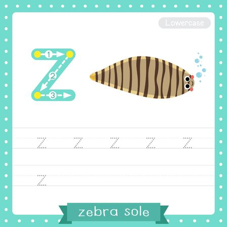 Letter Z lowercase cute children colorful zoo and animals ABC alphabet tracing practice worksheet of Zebra Sole for kids learning English vocabulary and handwriting vector illustration.