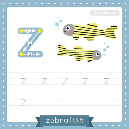 Letter Z lowercase cute children colorful zoo and animals ABC alphabet tracing practice worksheet of Zebrafish for kids learning English vocabulary and handwriting vector illustration. Çizim