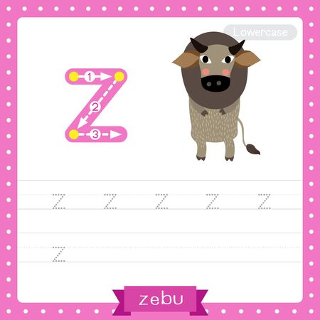 Letter Z lowercase cute children colorful zoo and animals ABC alphabet tracing practice worksheet of Zebu for kids learning English vocabulary and handwriting vector illustration. 矢量图像