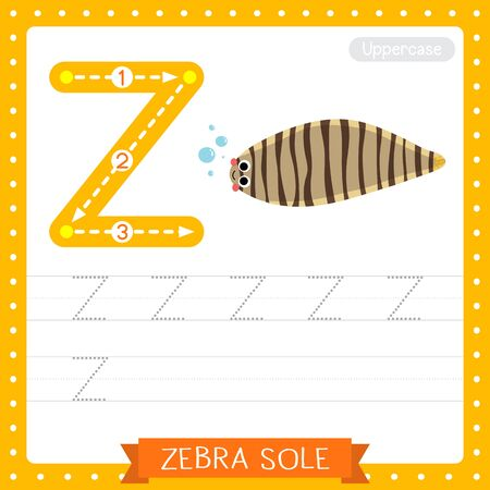 Letter Z uppercase cute children colorful zoo and animals ABC alphabet tracing practice worksheet of Zebra Sole for kids learning English vocabulary and handwriting vector illustration.
