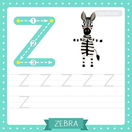 Letter Z uppercase cute children colorful zoo and animals ABC alphabet tracing practice worksheet of Zebra standing on two legs for kids learning English vocabulary and handwriting vector illustration. Illusztráció