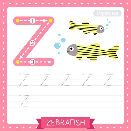 Letter Z uppercase cute children colorful zoo and animals ABC alphabet tracing practice worksheet of Zebrafish for kids learning English vocabulary and handwriting vector illustration.