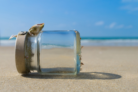 Empty glass bottle on sandy beach with blue sky and sea