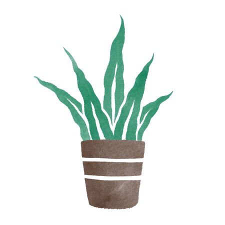 Watercolor hand painted house green plants in flower pots. floral elemnts isolated on white. Decorative greenery collection perfect for print, poster, card making and scrapbooking design