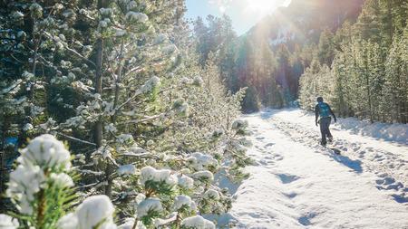 女性ハイカー森の散歩雪で冬の双子姉妹ピーク山、Estes 公園、コロラド州。 写真素材