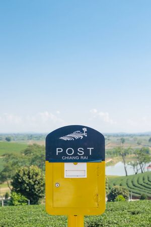 metal mailbox: Yellow mailbox in tea field with sky Stock Photo