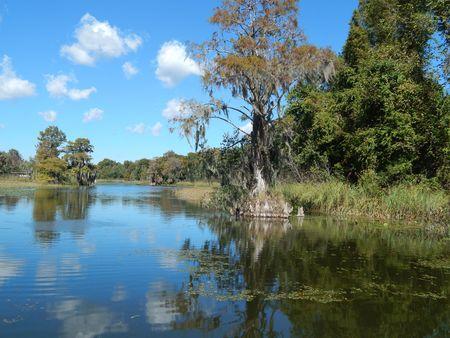Haines Creek
