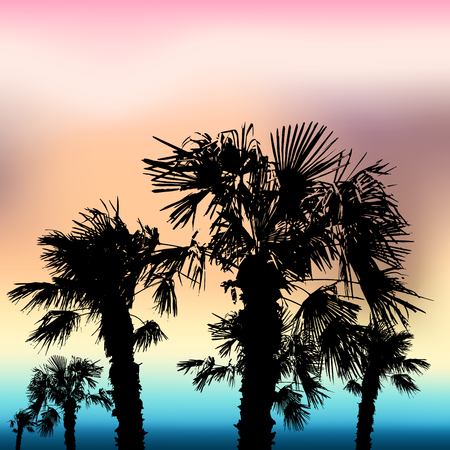 summer holiday sea and palms retro background Vector