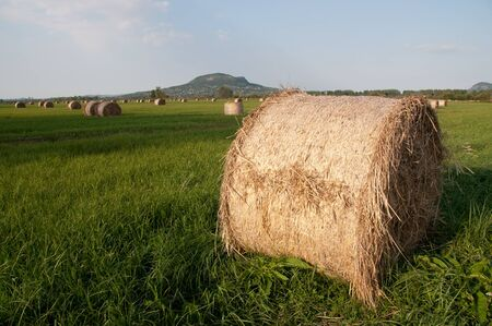 Hay field with bale detail volcano background photo