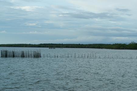 Fish trap in the sea
